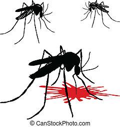 moustique, sangsue