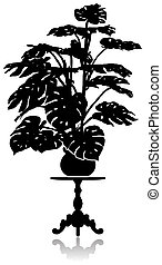 Monstera on the coffee table - A silhouette of a large...