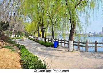 lake park  - daming lake park jinan china on a sunny day