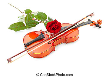 violin and red rose isolated on white background