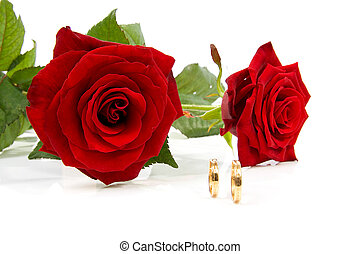 two roses and wedding rings