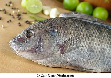 crudo, pez, llamado, Tilapia, rodeado, especias, hierbas,...