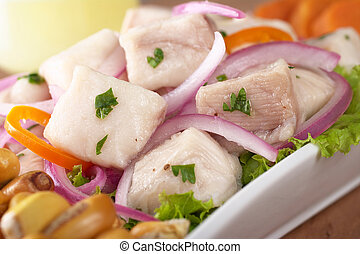 Peruvian-style ceviche made out of raw dogfish (Spanish:...
