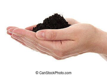 hand with black soil - hands are holding black garden soil...