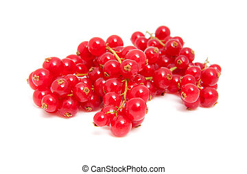 cluster red berries in closeup over white background