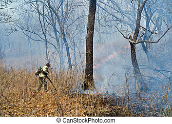 Suppression of forest fire 51 - A suppression of forest...