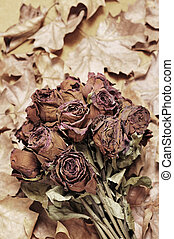 dried roses - a bouquet of dried roses in autumn