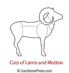 Cuts-of-Lamb-and-Mutton - Cuts of Lamb and MuttonPattern...