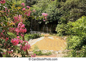 Chinese garden with waterfall - Beautiful chinese garden...