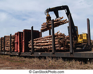 Loading Cut Trees on a Railcar - Crane loading cut logs on a...