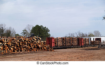 Railcar Loaded With Cut Trees - Stack of cut trees waiting...