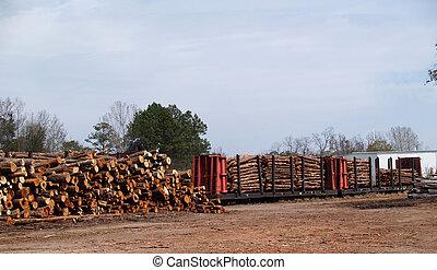 Railcar, cargado, con, corte, árboles