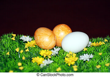 eastereggs - Nice decoration for Easter time