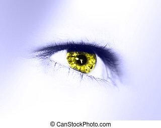 beautiful eye isolated