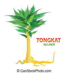 tongkat-ali-jack - Tongkat Ali - nature's sexual stimulant