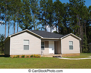 Small Low Income Home - Small low income home with tan vinyl...