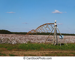 Center Pivot Irrigation System in a - Center pivoting...
