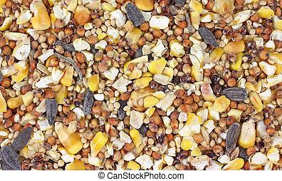 Close view of wild bird food