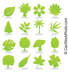 Icons of plant