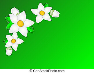 Jpg.  Green White Flowers