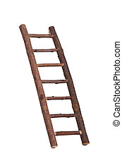 Inclined ladder - Mini inclined ladded with hooks on it hold...