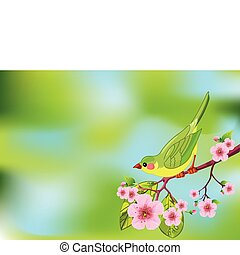 Spring bird background - Cute bird sitting on blossom tree...