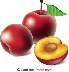 Vector plums  - Group of photo-realistic  vector plums