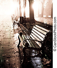 Bench in night alley with lights in Odessa, Ukraine. Photo...