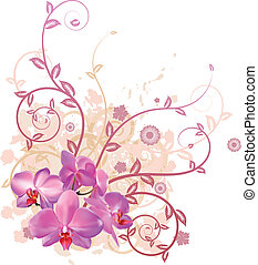 fresco, orquídea, floral, fundo