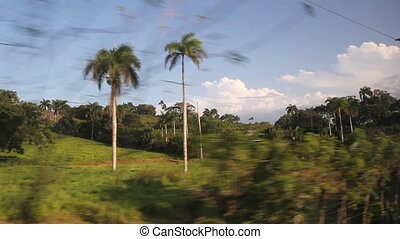 Driving through Dominican. Fields. - Driving through the...