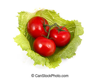 Tomatoes and lettuce.