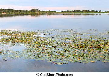 Shabbona Lake - Illinois.