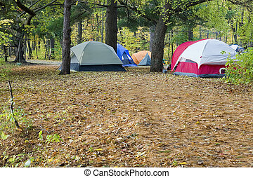 Camping and tents in the park