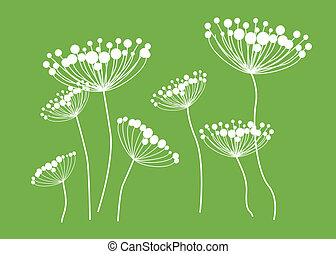 Queen Anne Lace Drawing - Computer drawing of Queen Anne\'s...