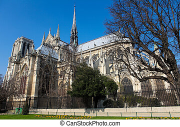 Notre Dame cathedral in Paris - Notre Dame cathedral in the...