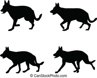 german shepherd - vector