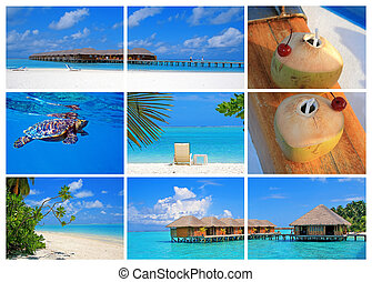 Maldives - Collection of pictures from Meeru island,...
