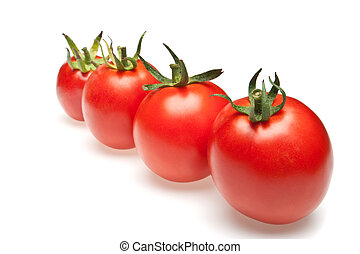tomatoes in row