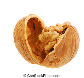 Walnut It is isolated on the white background, the ripened...