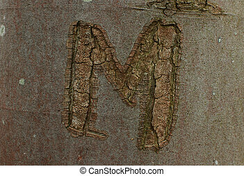 "letter 'M' - letter ""M"" cut long time ago on the tree steam..."