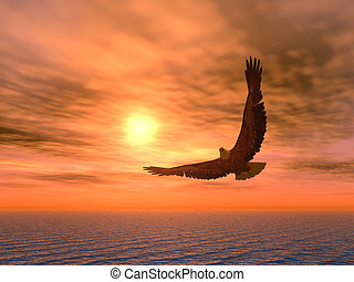 Eagle_variant - Eagle on a background of the coming sun.