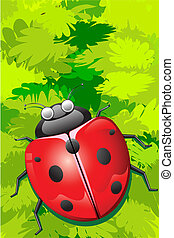 Lady Bug sitting on Leaf