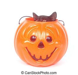 Black cat in plastic pumpkin - Black cat sitting inside of a...
