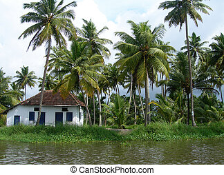 Tourism in Kerala India - Palm trees and small home on...