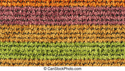 Colorful Woven Texture - Colorful woven texture background