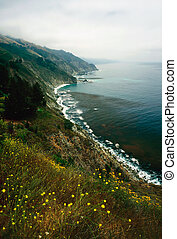 Big Sur , California