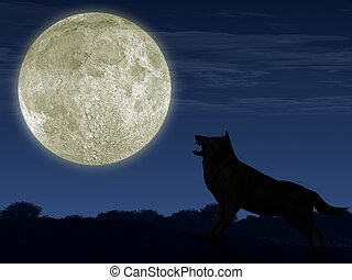 The wolf and the moon. The detailed illustration of an...