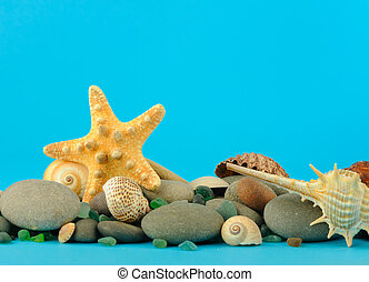 Starfish and set of objects of the sea underwater world. On...