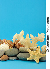Starfish and set of objects of the sea underwater world On...