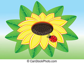 Ladybug on a Sunflowe - Illustration of Red Ladybug on a...